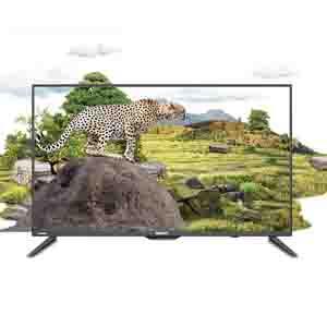 Orient 32 Inch Cheetah HD LED TV